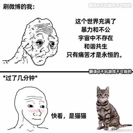 老虎不是猫于2021-06-02 16:10发布的图片