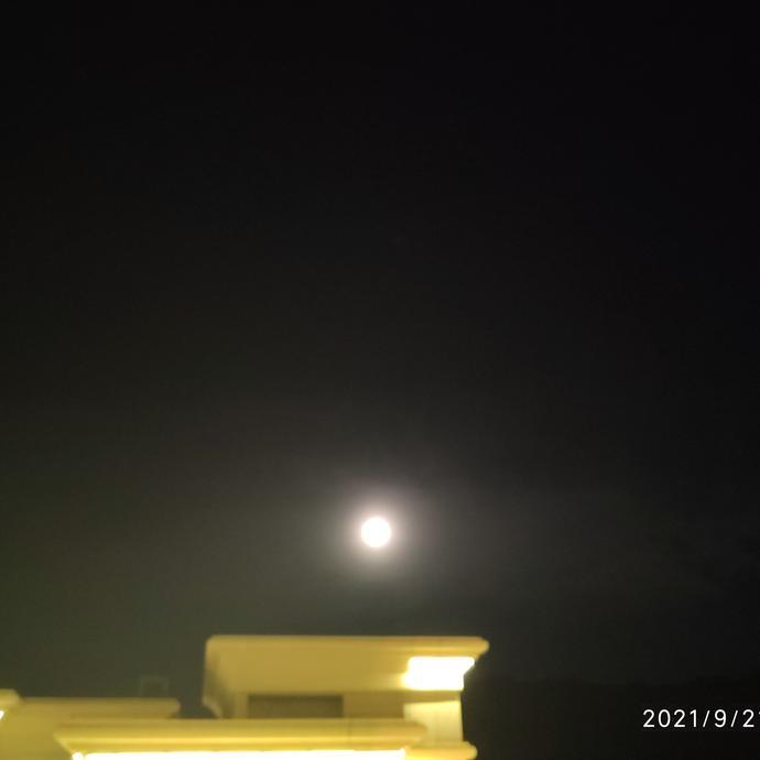 晴空闲云于2021-09-21 20:07发布的图片