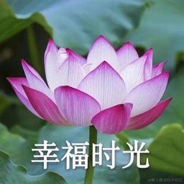 Xuanz于2020-09-30 14:36发布的图片